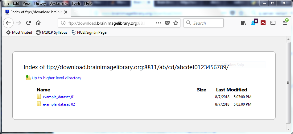 Brain Image Library: Download